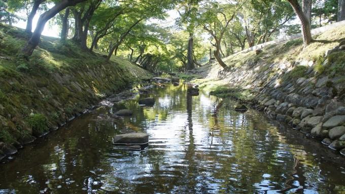 奈良公園②