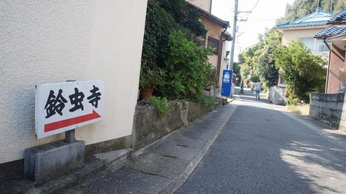 鈴虫寺案内②