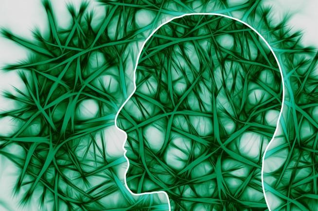 s-neural-pathways-221718_1280