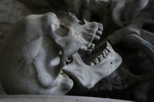 s-skull-476740_1280