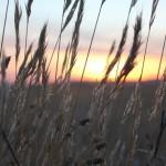 s-sunset-622966_1280