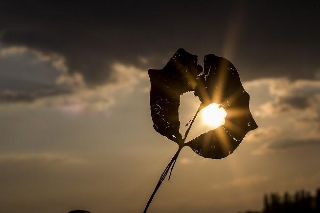 s-sun-622740_1920