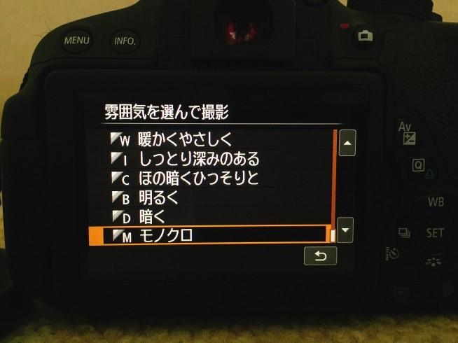 s-IMG_7240