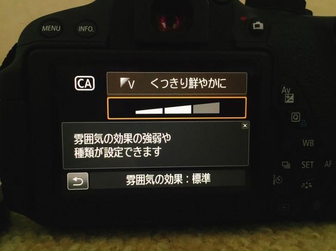 s-IMG_7241