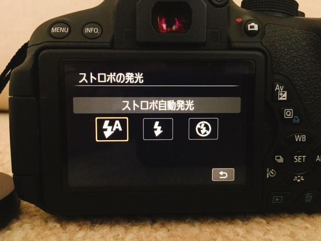 s-IMG_7243