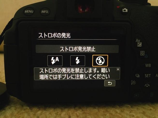 s-IMG_7245