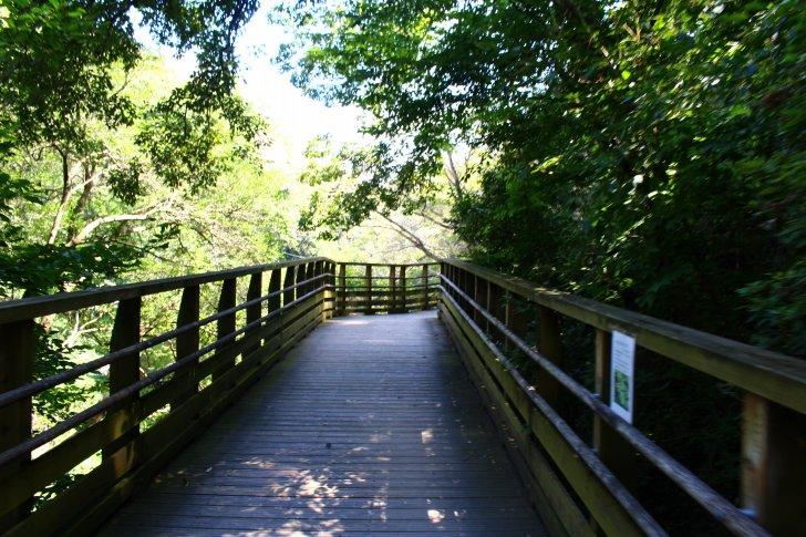 森林鉄道風歩道橋