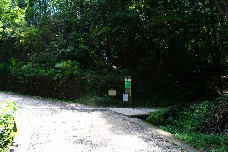 管理道とぼうけんの路の分岐点