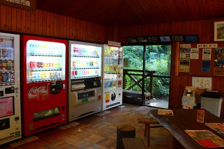 ピトンの小屋の自販機