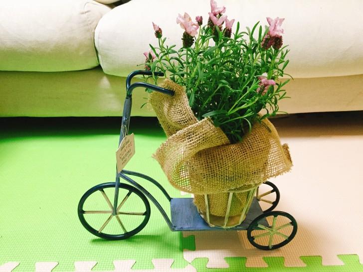 自転車のお花