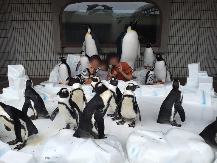 ペンギン達と記念撮影