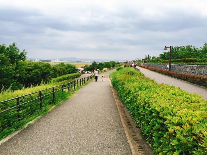 冒険の丘への道